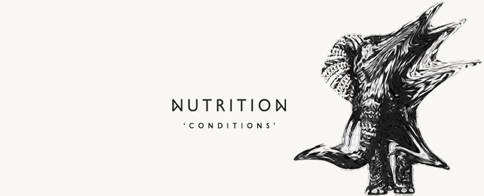 Getting to know Nutrition