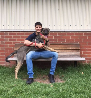 Mark Aims To Save Animals, One Dog At A Time