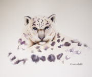 How Nature Effects An Artists Watercolour Paintings